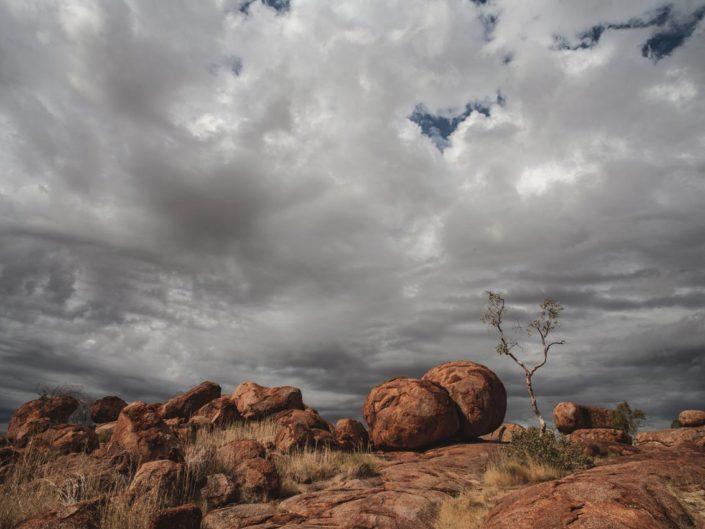 Les devils marble en Australie