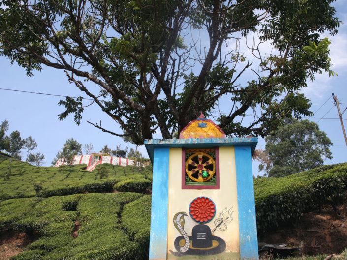 Temple dans un champ de thé à Munnar