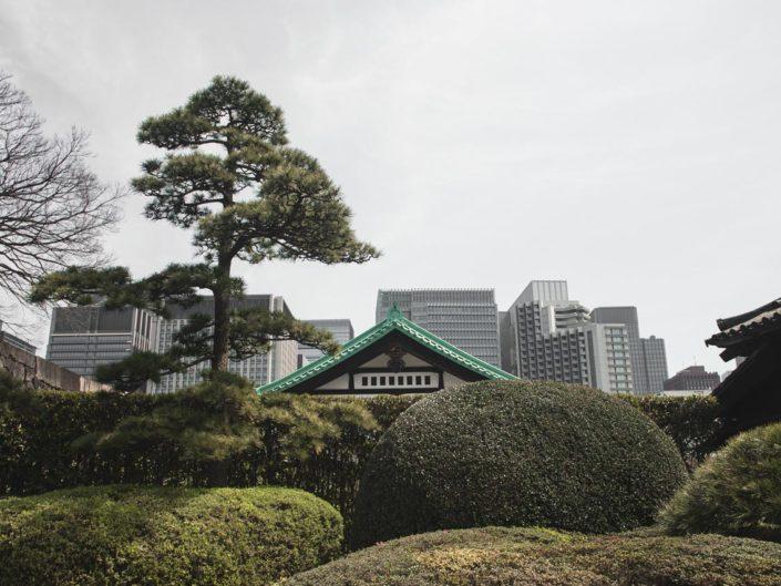 jardin impérial tokyo