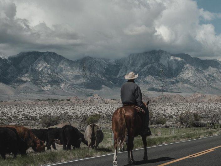 un cowboy sur les routes californiennes