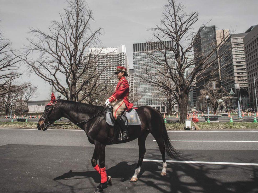 garde royale japonaise