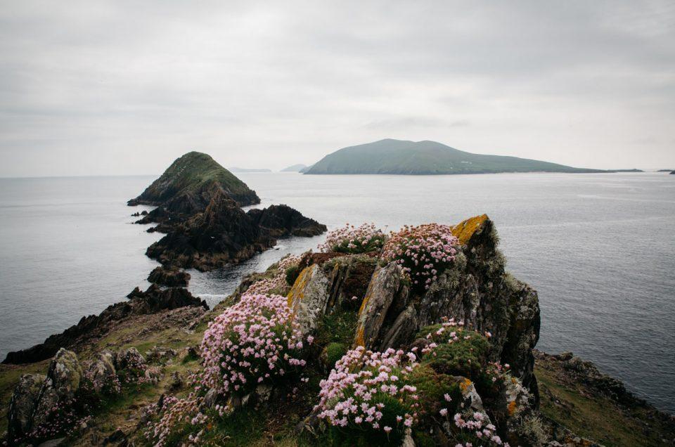 Road trip d'une semaine en Irlande | Conseils & Itinéraire