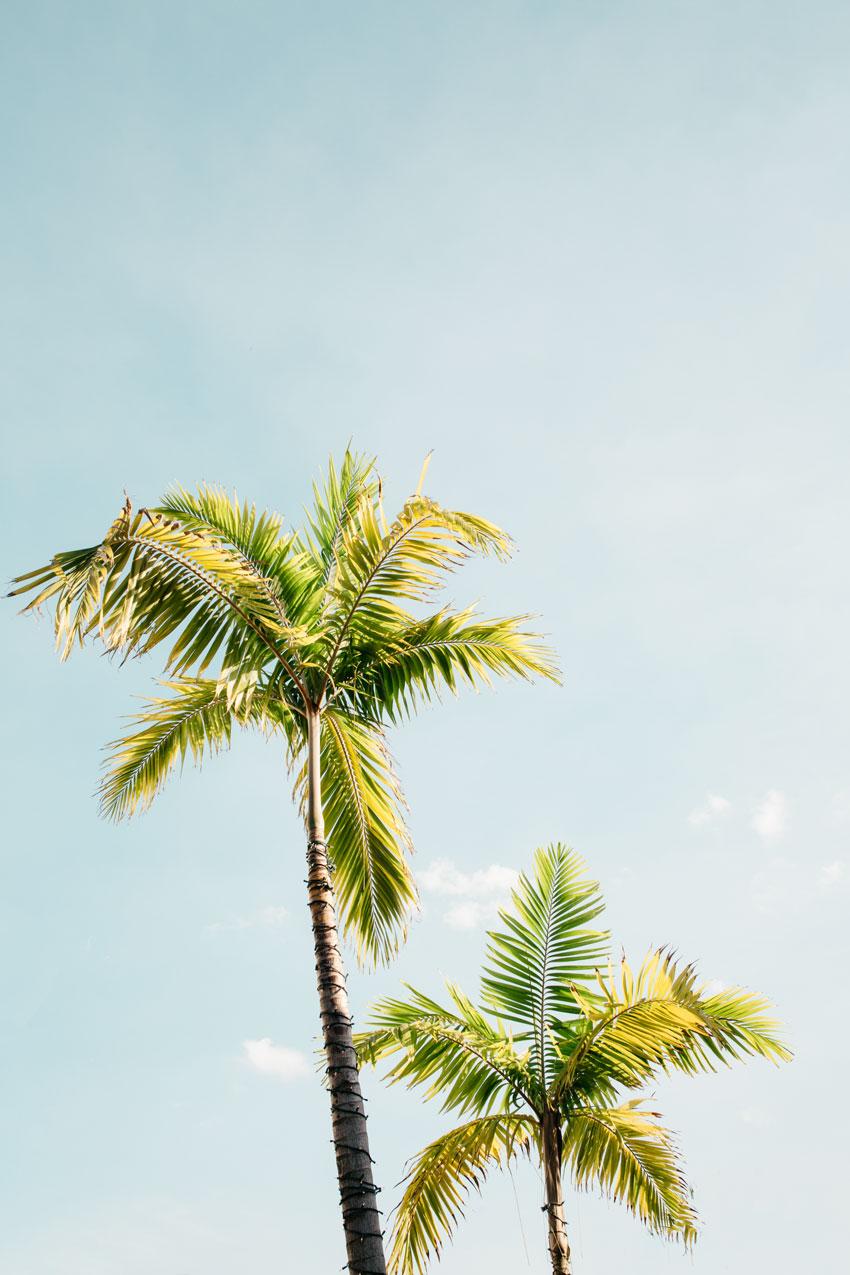 sites de rencontres en ligne gratuits à Miami Téléphone rencontres Sims