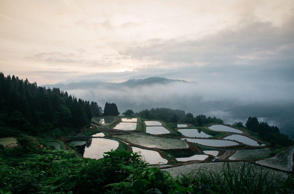 Yamakoshi, village préservé dans les montagnes japonaises