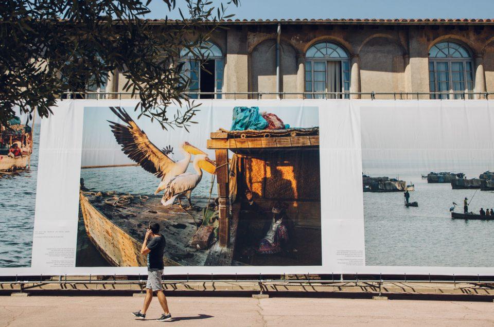 Visa pour l'Image, édition 2020 — Le festival au cœur de l'actualité